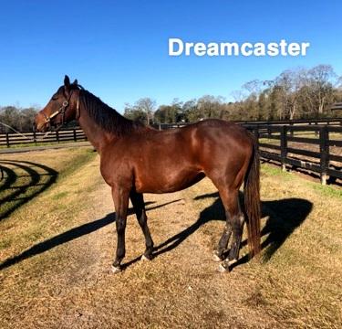 Dreamcaster.jpg