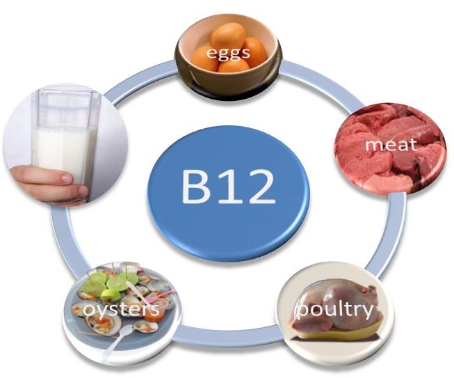 170717_Pic3_vitamin-b12-foods.jpg