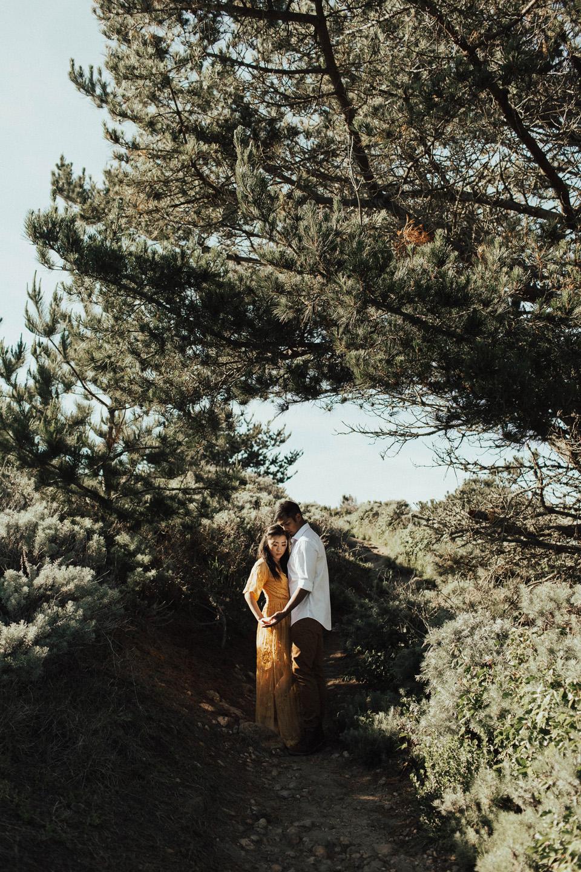 Big Sur Engagement Session - Michelle Larmand Photography005