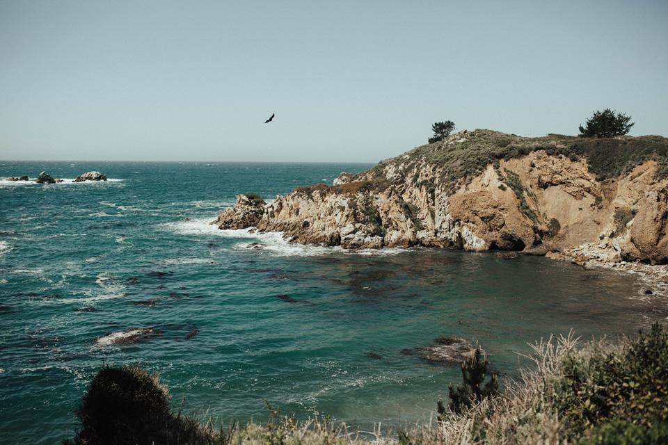 Big Sur Engagement Session - Michelle Larmand Photography013
