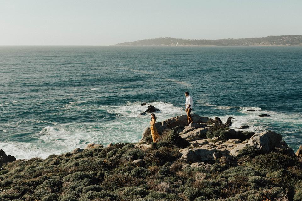 Big Sur Engagement Session - Michelle Larmand Photography014