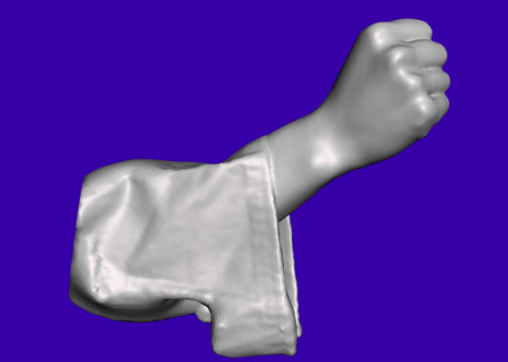 Scan reference, fist
