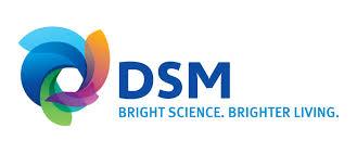 dsm logo new.jpg