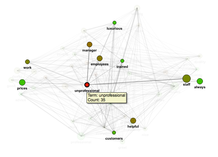 "Figure 2. Co-occurrence graph (""unprofessional"" node and lines highlighted)."