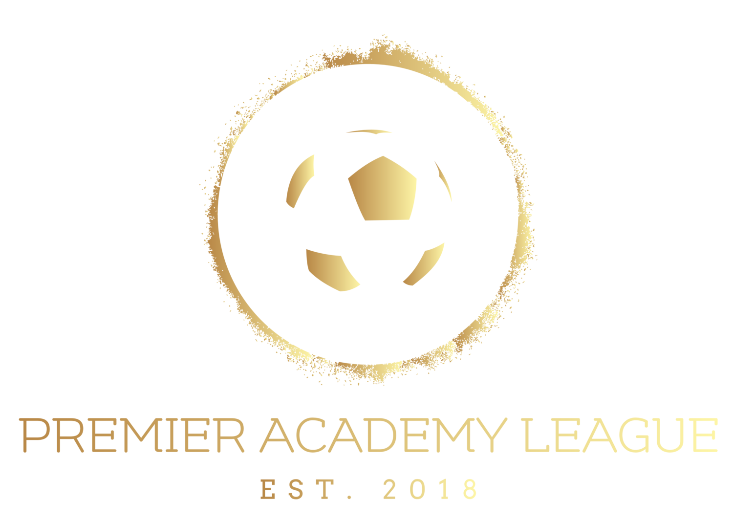 Premier Academy League