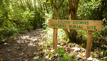 southdowns natural burial site
