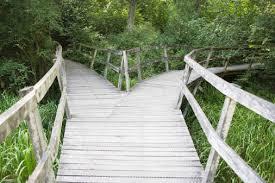 plank-path