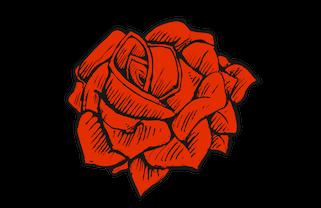 Staple+Rose.jpg