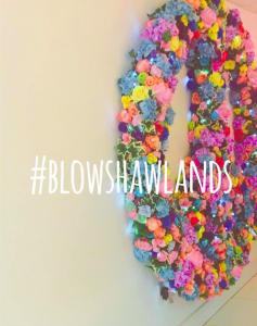 e36b3-blowww.png