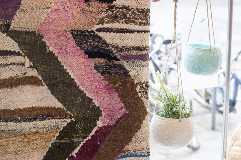 rug-plant
