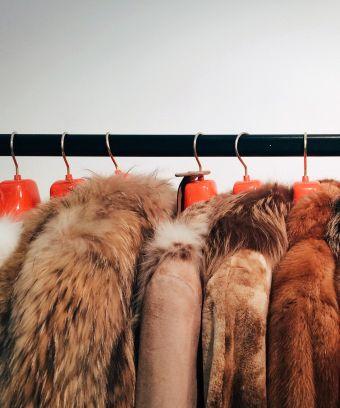 norway fur ban