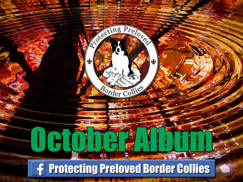 October Album.jpg
