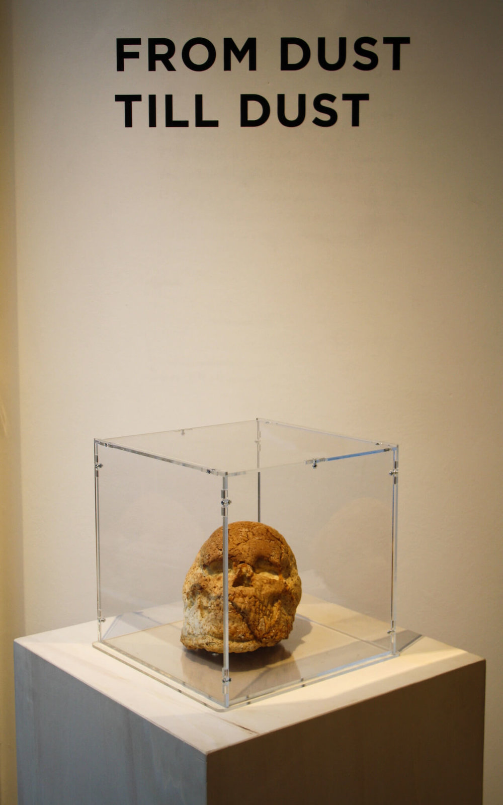 2018  bread, mould, plexiglass case  B#S Gallery, Treviso  1m x 1m -