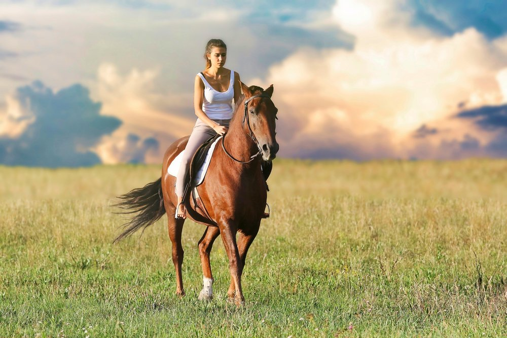 horse woman-3432069_1920.jpg