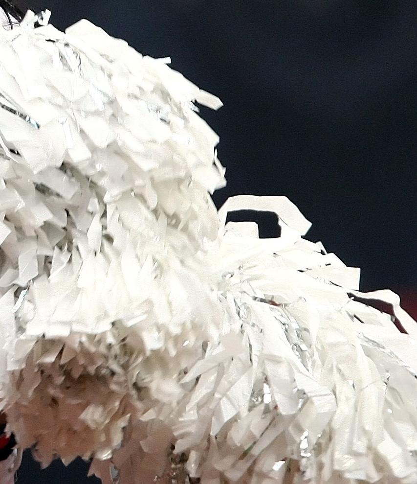 cheerleader-1544046_1920.jpg