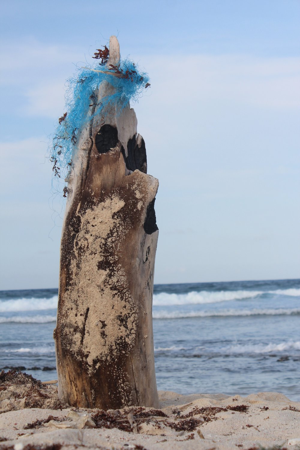 5 Ocean Garbage Patches