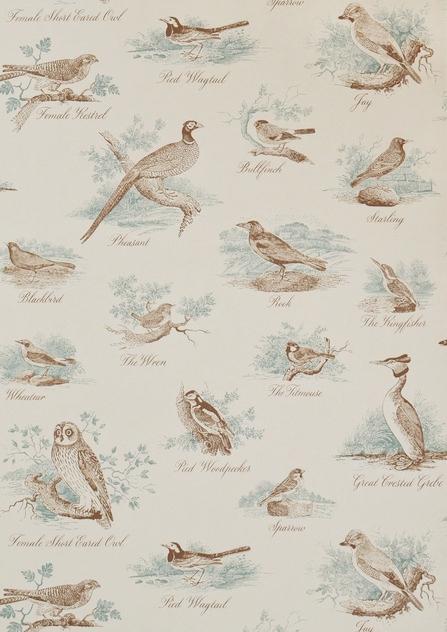 LW Bewick Birds.jpg