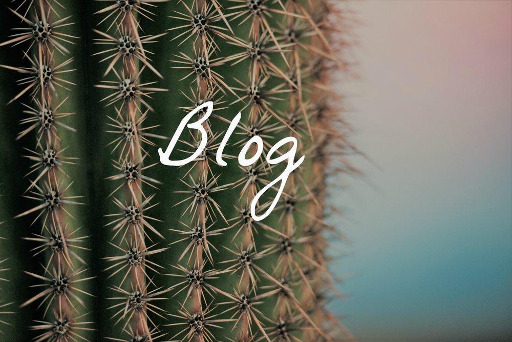 blog2.jpg