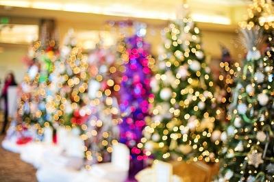 christmas-trees-1823943_640.jpg