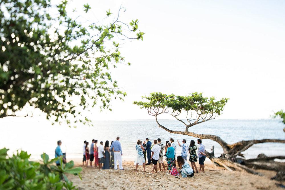 anini-beach-wedding-4.jpg