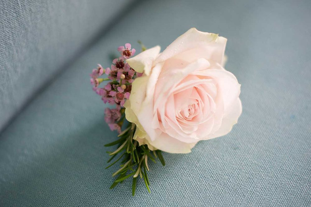 Rose buttonhole pink