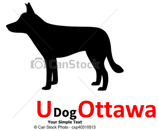 dogs resized.png