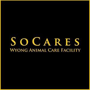 SOCARES logo 300.jpg