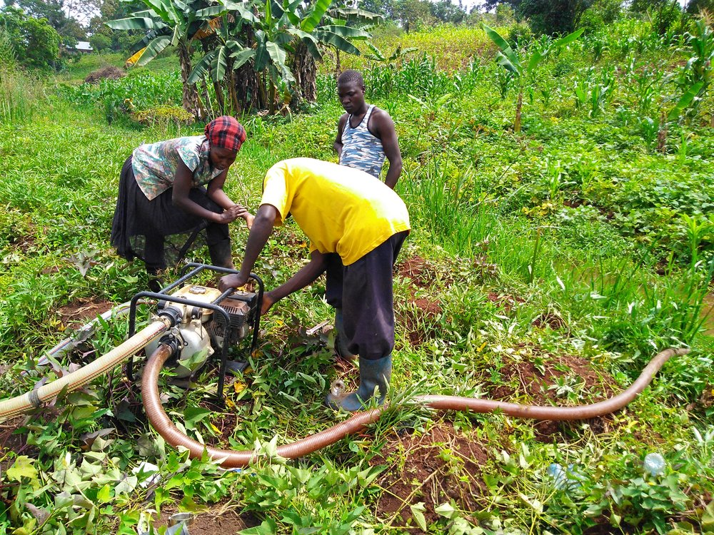 Members of the Kyekidde irrigation group work together to prep and start the pump, which draws water from the stream (at right) and sends it through another flexible pipe (at left) uphill to a set of micro-furrow-irrigated plots.