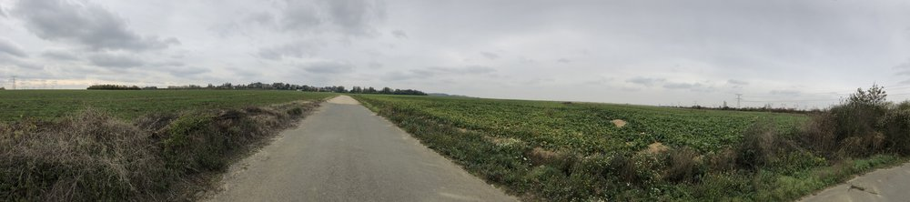 A lonely road on my trip towards Creil, France.