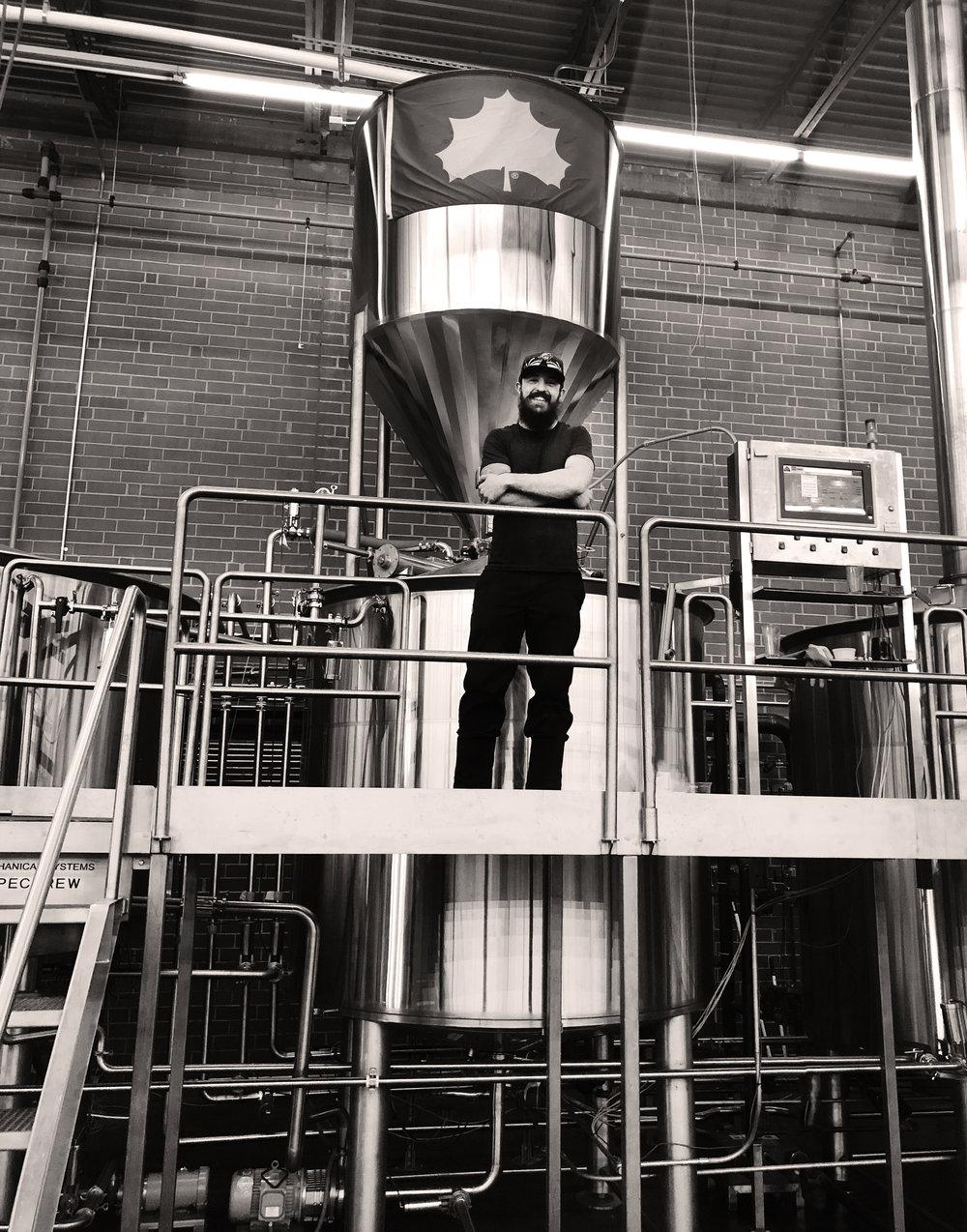 Brad Bergman - Wild Blossom. Sycamore Brewing.jpeg