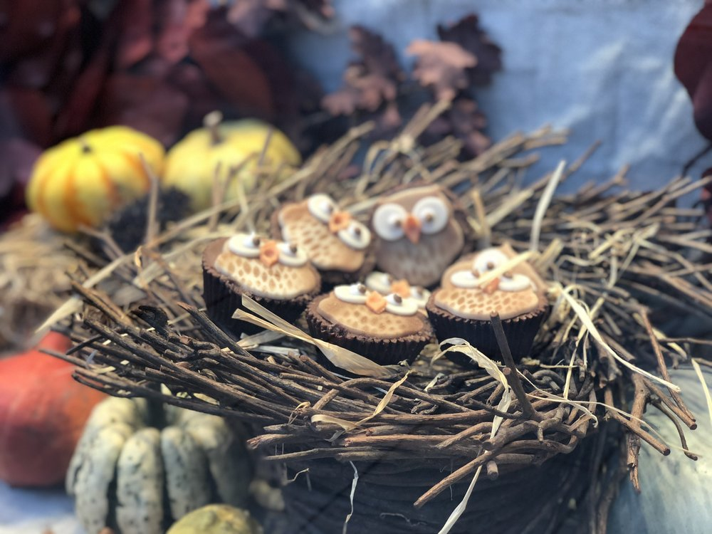 Betty's Owl Cupcakes