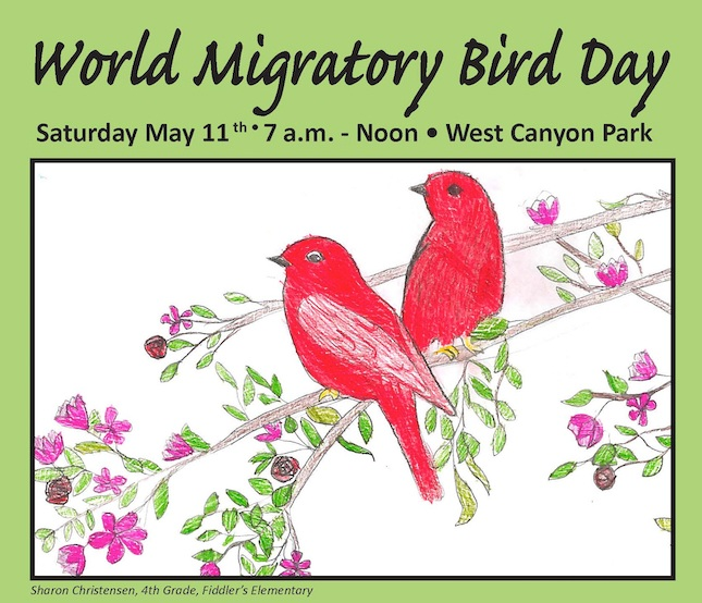 World Migratory Bird Day Celebration. May. 11