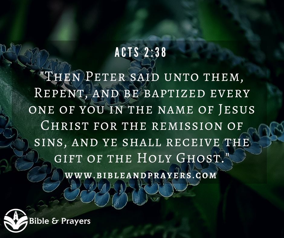 Bible Verse Acts 2-38