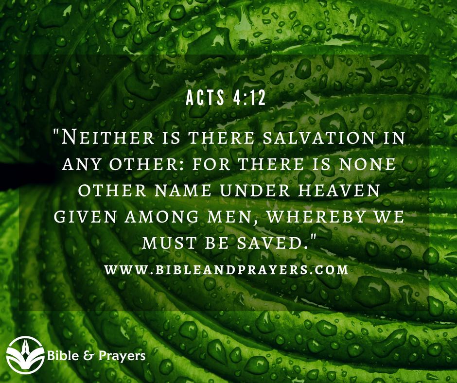 Bible Verse Acts 4-12