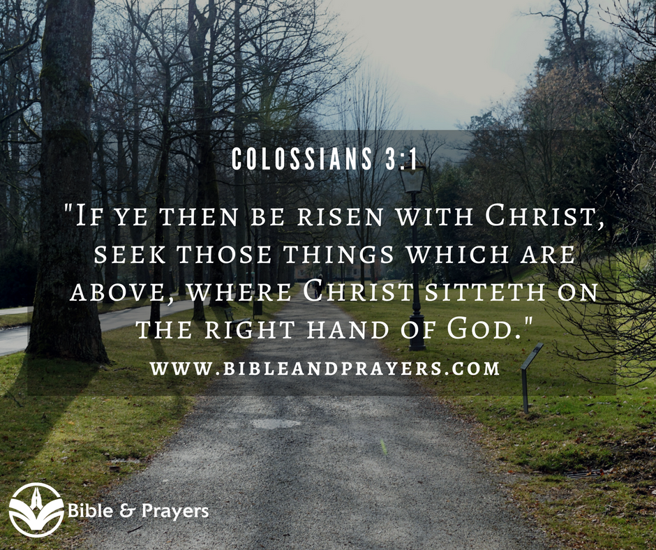 Bible Verse Colossians 3-1