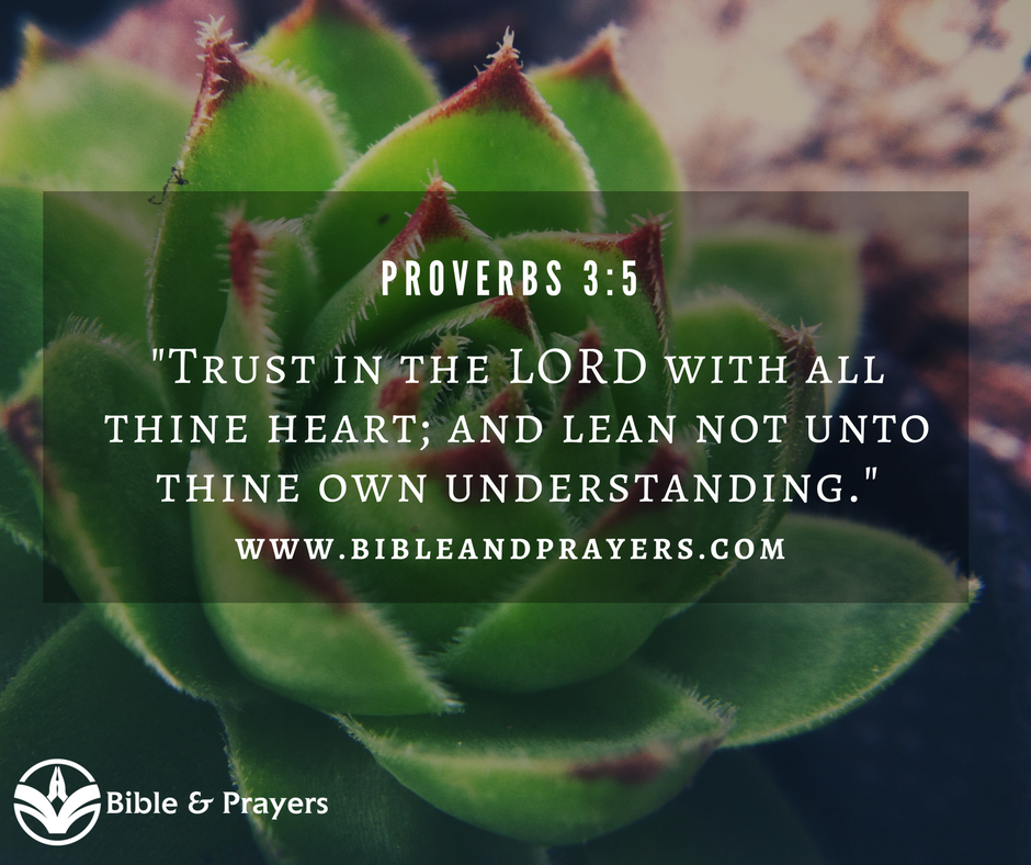 Bible Verse Proverbs 3-5