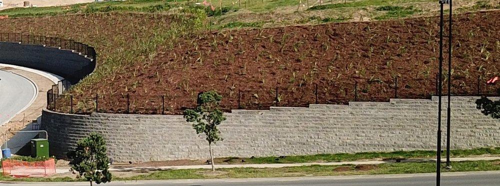 Big_wall.jpg