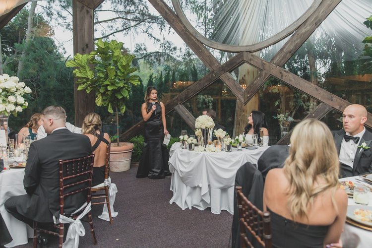 How To Keep Your Bridal Party Informed: A Guide To Keeping Everyone In The Loop - Bridesmaid giving a speech.