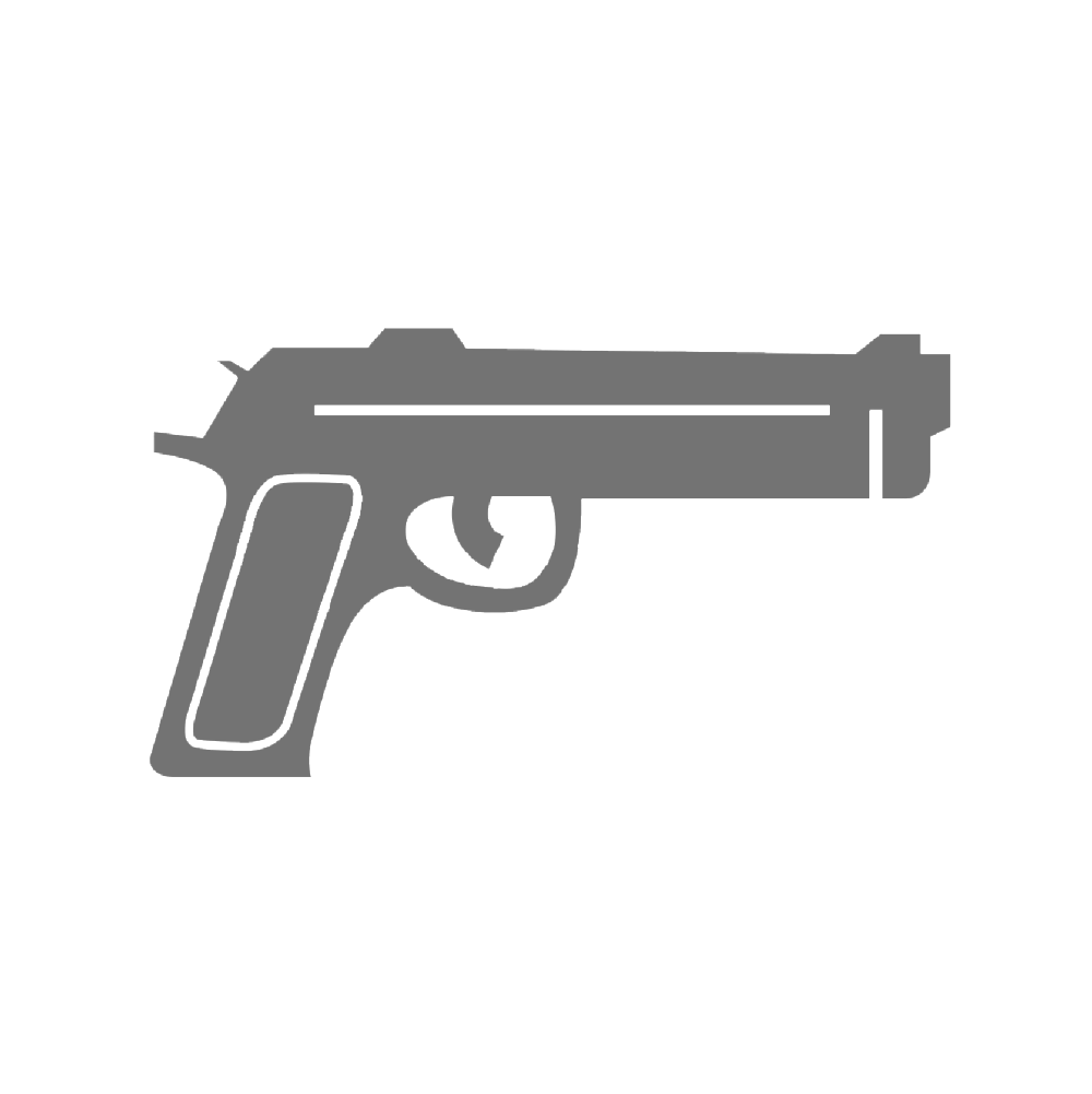 pistol resized.png