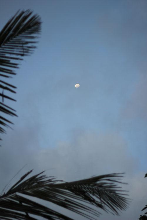 Trinco Moon