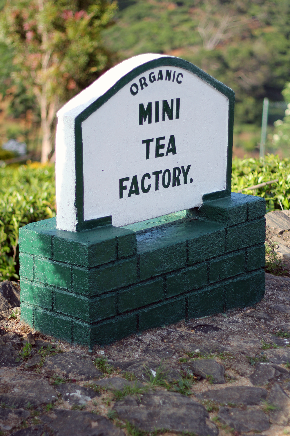 Tea Factory - Sri Lanka