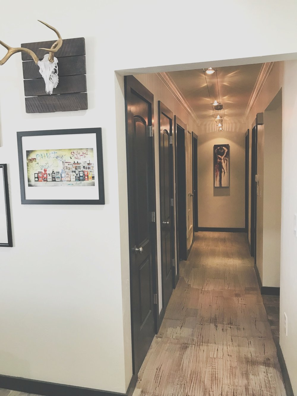 """Just to the right of the gallery wall is the hallway. I chose to use Sherwin Williams Iron Ore On the trim and doors. Dover White is the wall color also by Sherwin Williams. You may have noticed one of the doors is painted the same color as the walls. That was done intentionally. It houses the heater and I didn't want to draw so much attention to it. It is narrow and about a foot shorter than the other doors. In the future we plan to remove the trim, exposed hinges and door knob and make a """"secret"""" door. Unfortunately that was an after thought so Its future plans."""