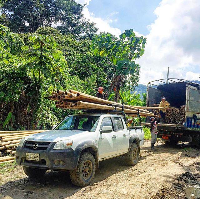 Another day, another grind🎋✊🏽🌳🌱🏗 . #regenerationfieldinstitute  #bamboobuilding #bambooconstruction #bambooarchitecture #bamboofarming #bamboocultivation #cañaguadua #guadua #guaduabamboo  #farmlife #junglelife #tropicalfarm #tropicalagriculture #losarbolerosfarm #chone #manabi #Ecuador