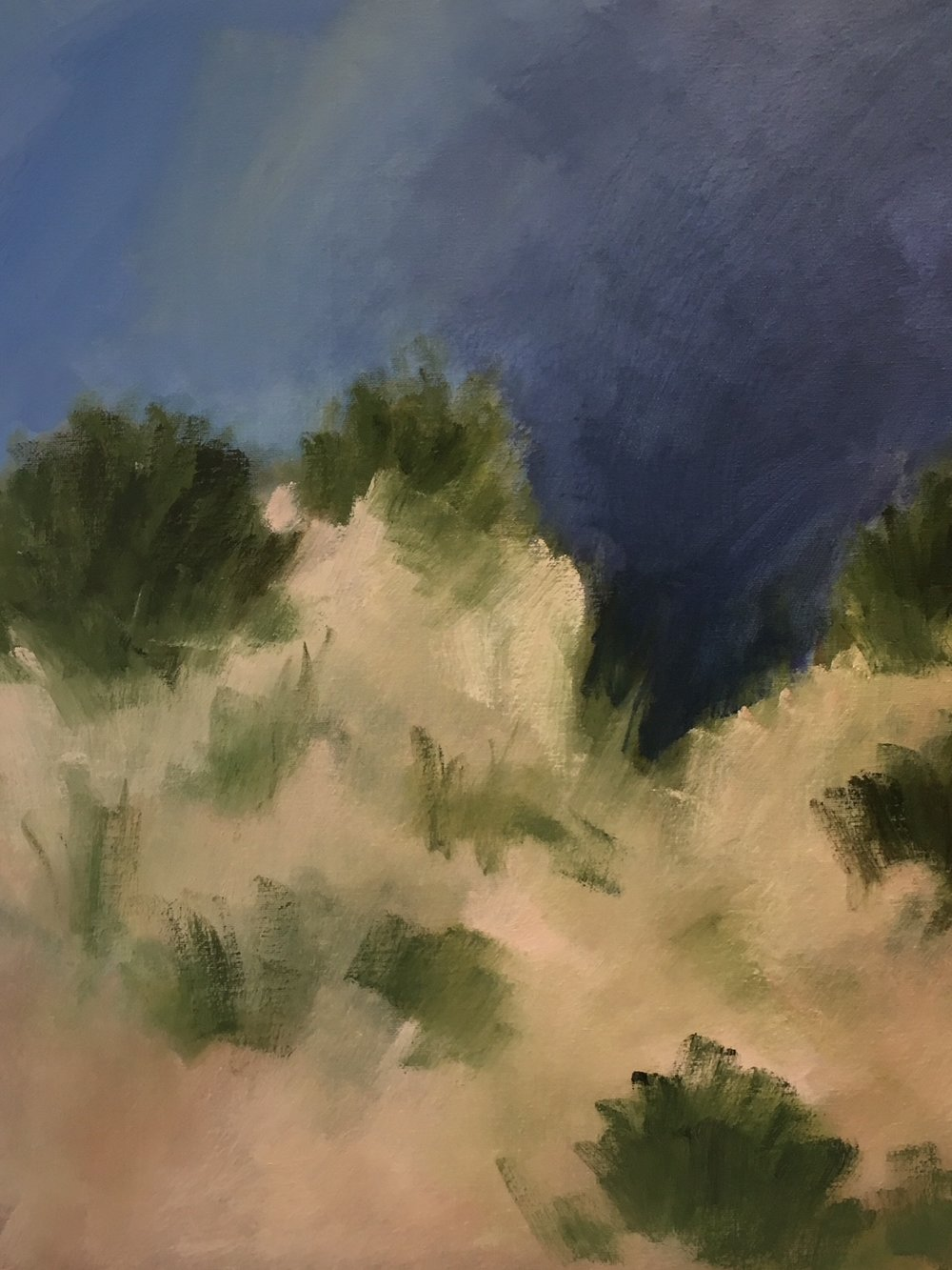 """Dunes After The Rain"" 