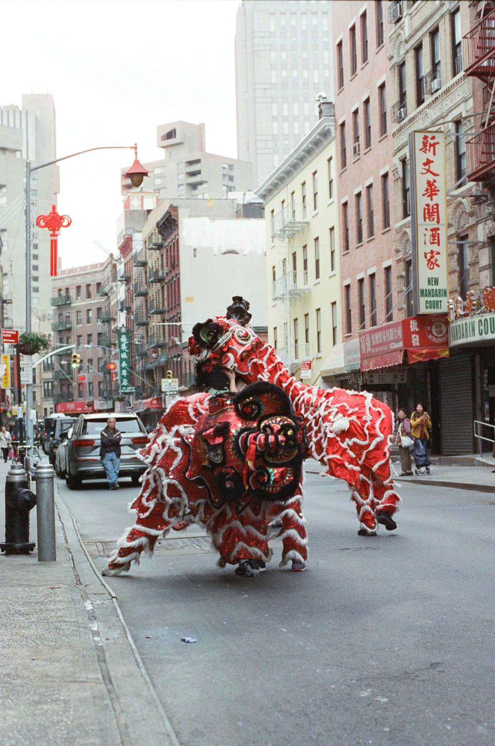 Shirley-Cai-Chinatown-9.png
