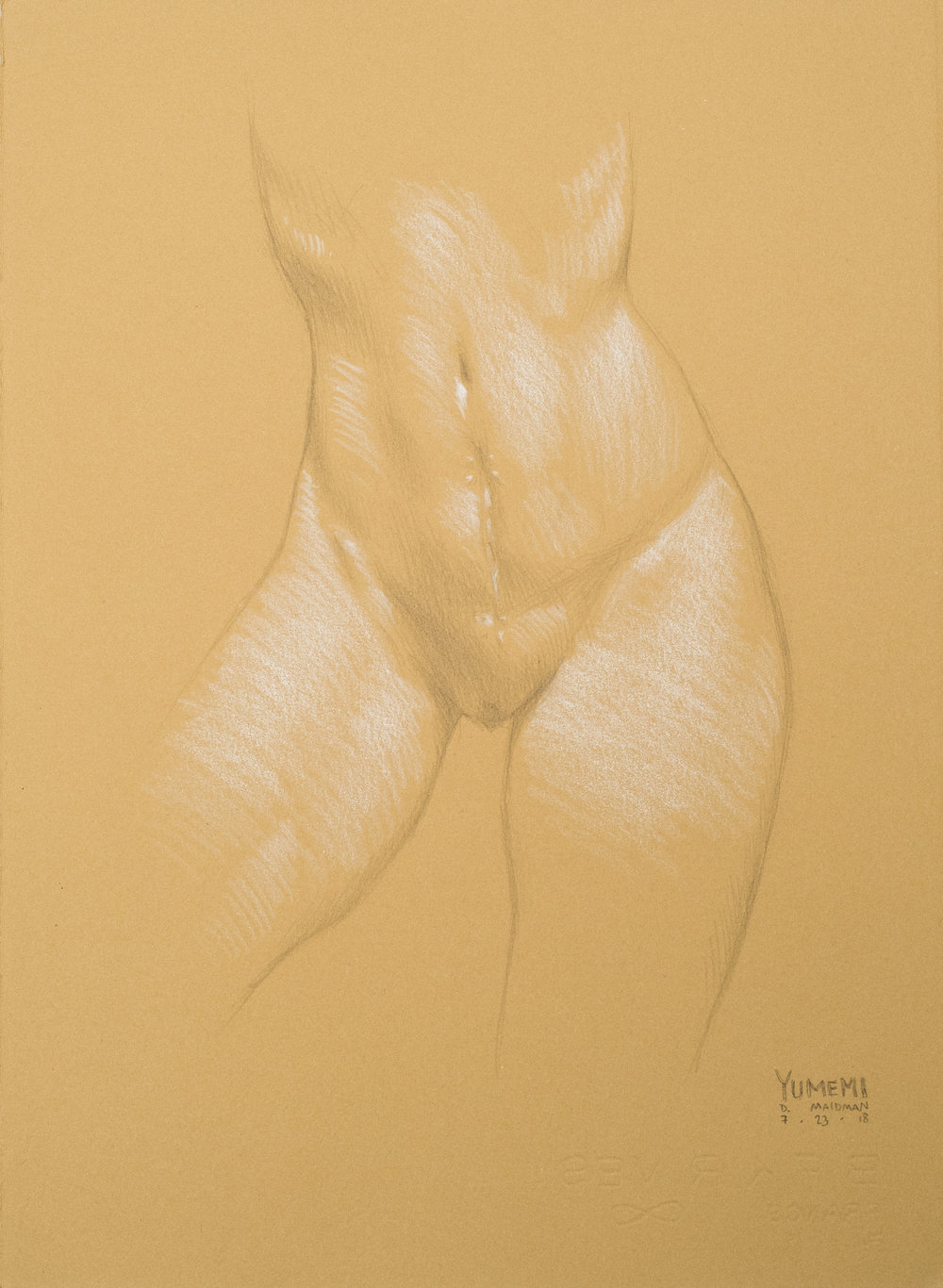 "18. Daniel Maidman [ @danielmaidman ]  Pencil and White Pencil on Paper 15""x11"""