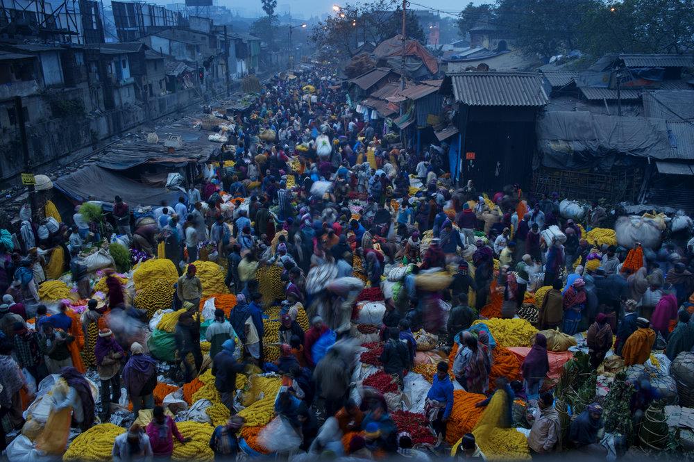 Mullick Ghat  ( Flower Market ), Calcutta / India