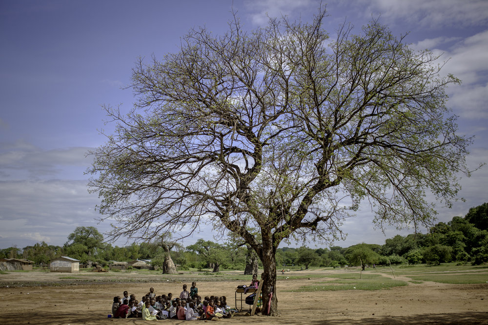 Students conducts their teaching in the shadow of a tree / Malawi - 2016