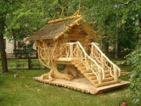 The tree house dog house