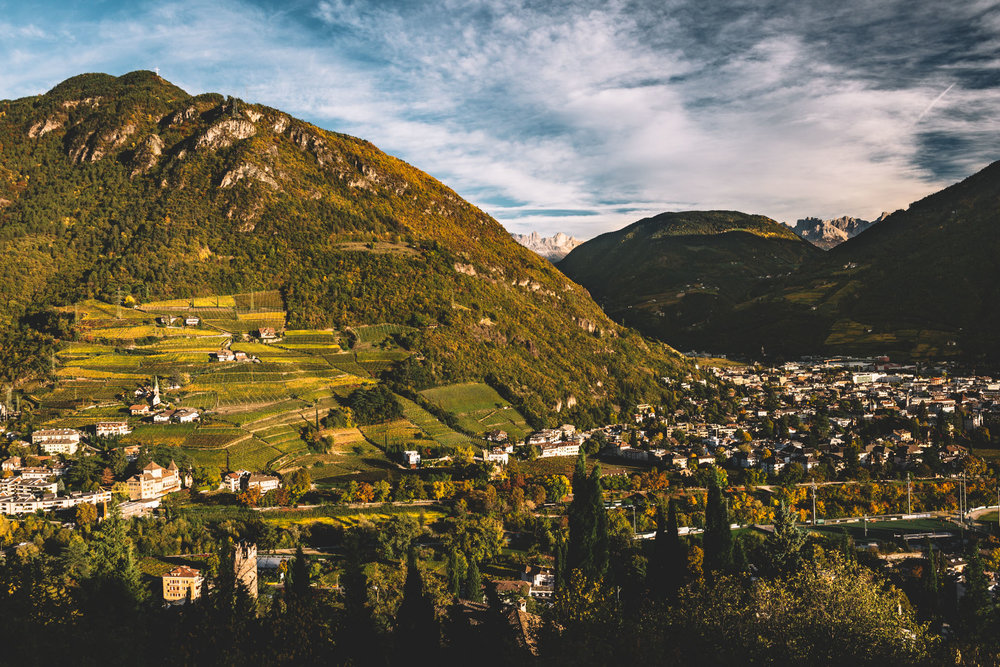 Thurnhof and Alto Adige-71.jpg